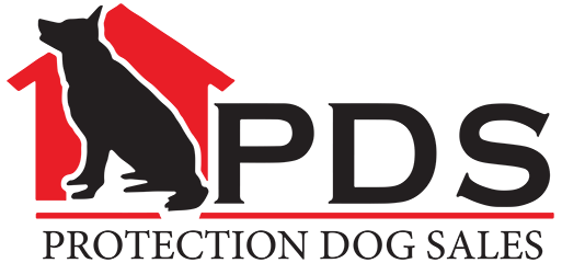 Americas Finest Home Raised and Trained Protection Dogs! (502) 542-9747